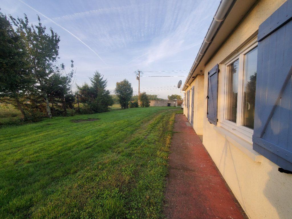 Maison à louer 4 105m2 à Montech vignette-1