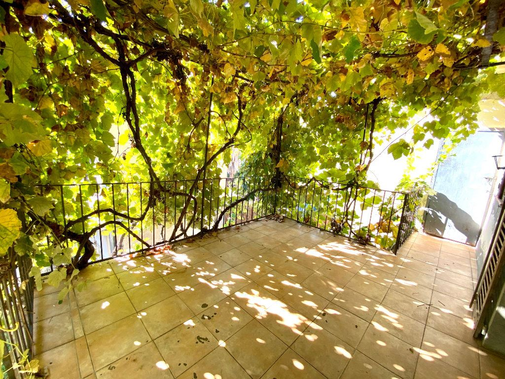 Appartement à louer 2 33.5m2 à Villeneuve-Loubet vignette-2