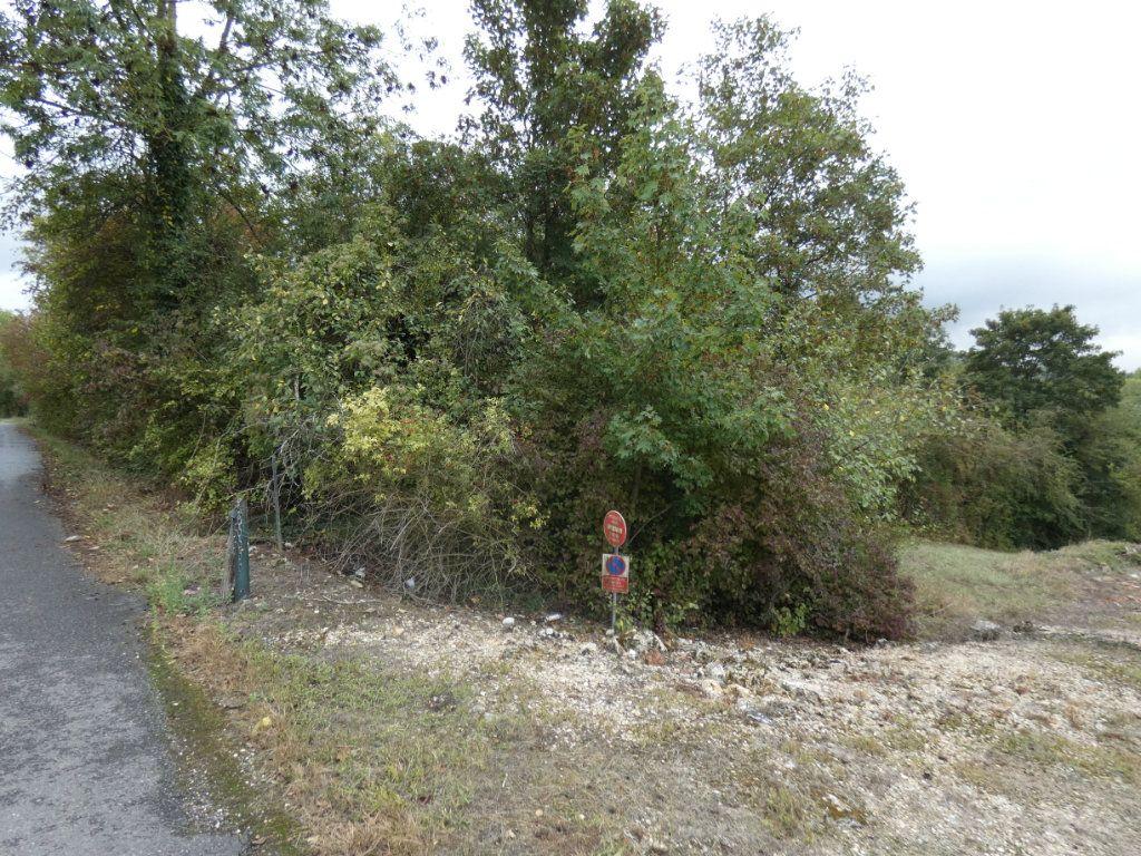Terrain à vendre 0 4385m2 à Barzy-sur-Marne vignette-2