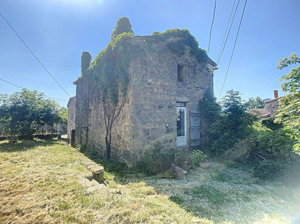 Maison à vendre 11 310m2 à Colombier-le-Vieux vignette-3