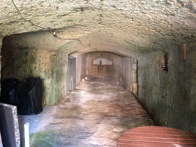 Maison à vendre 4 130m2 à Saint-Romain-sur-Cher vignette-7