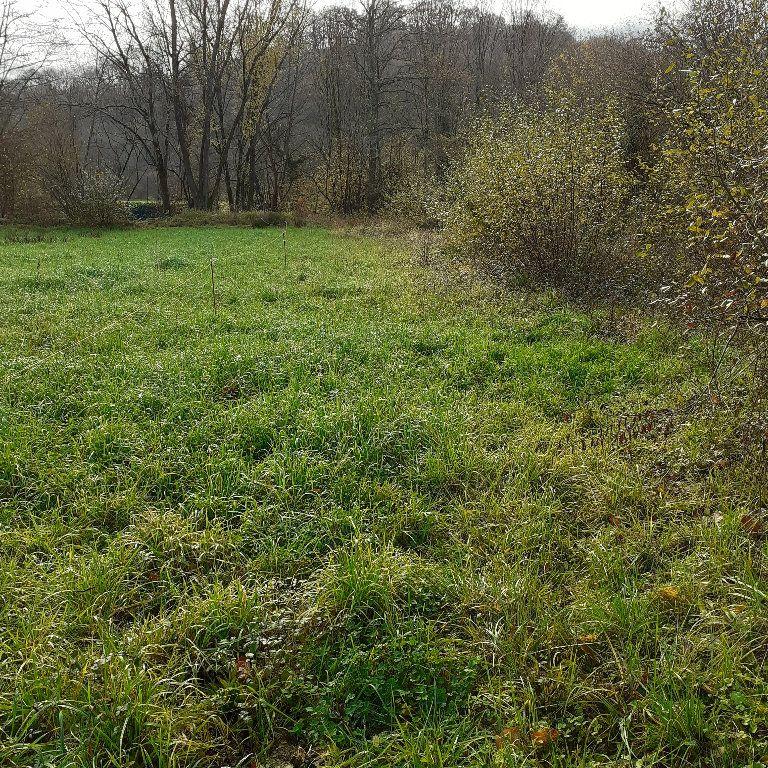 Terrain à vendre 0 1571m2 à Lucq-de-Béarn vignette-1