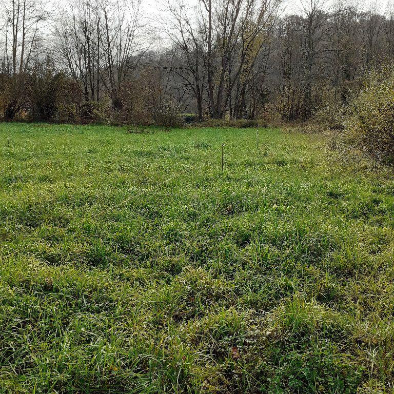 Terrain à vendre 0 1571m2 à Lucq-de-Béarn vignette-2