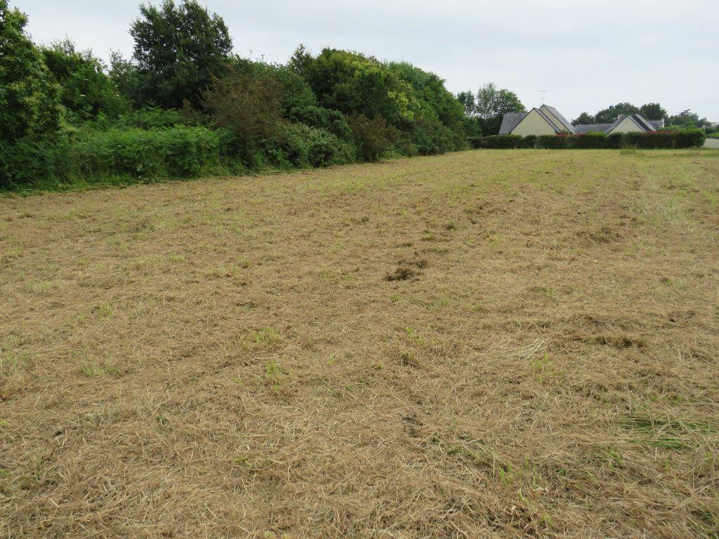 Terrain à vendre 0 1116m2 à Gouesnach vignette-3