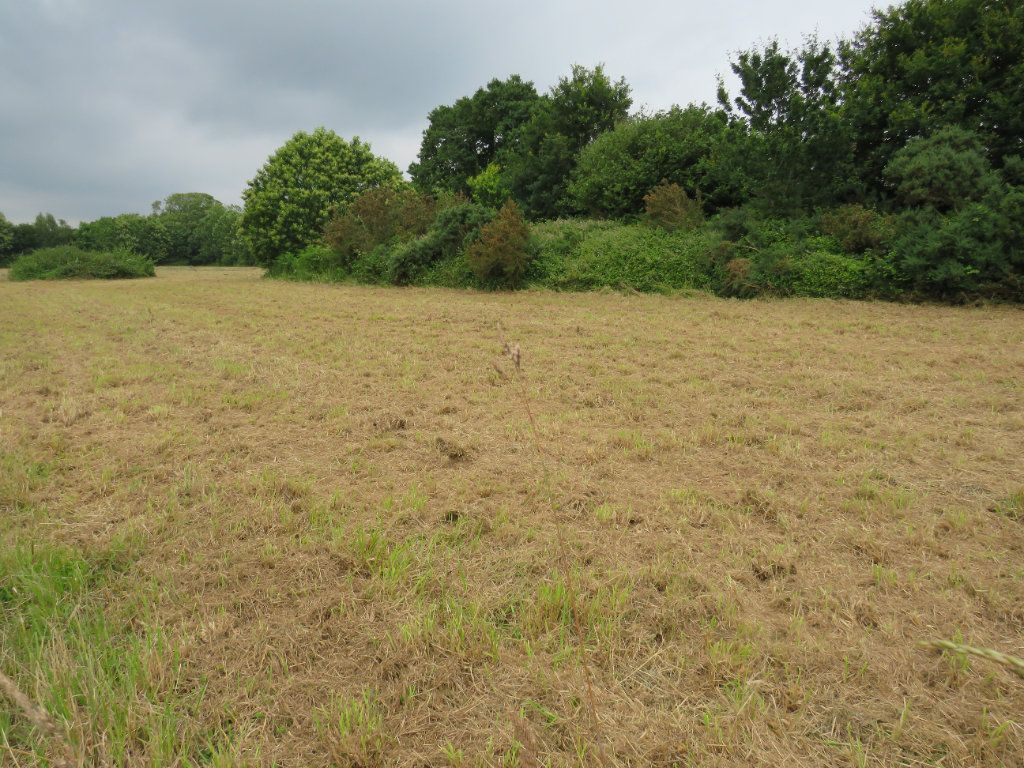 Terrain à vendre 0 1116m2 à Gouesnach vignette-6