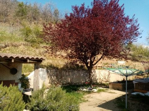 Maison à vendre 6 122m2 à Châteauneuf-de-Chabre vignette-6