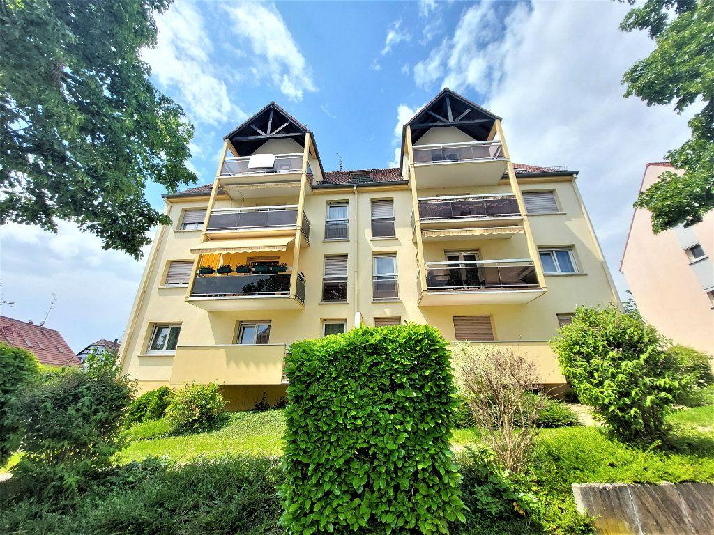 Appartement à louer 2 49m2 à Strasbourg vignette-4