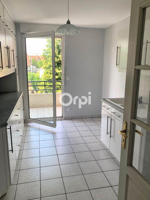 Appartement à louer 3 75m2 à Eckwersheim vignette-3