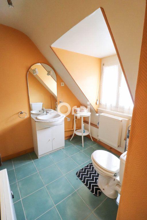 Appartement à louer 3 56m2 à Andlau vignette-5