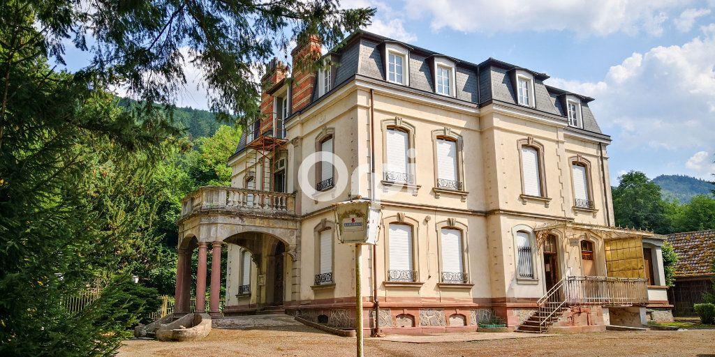 Immeuble à vendre 0 1755m2 à Soultzbach-les-Bains vignette-1