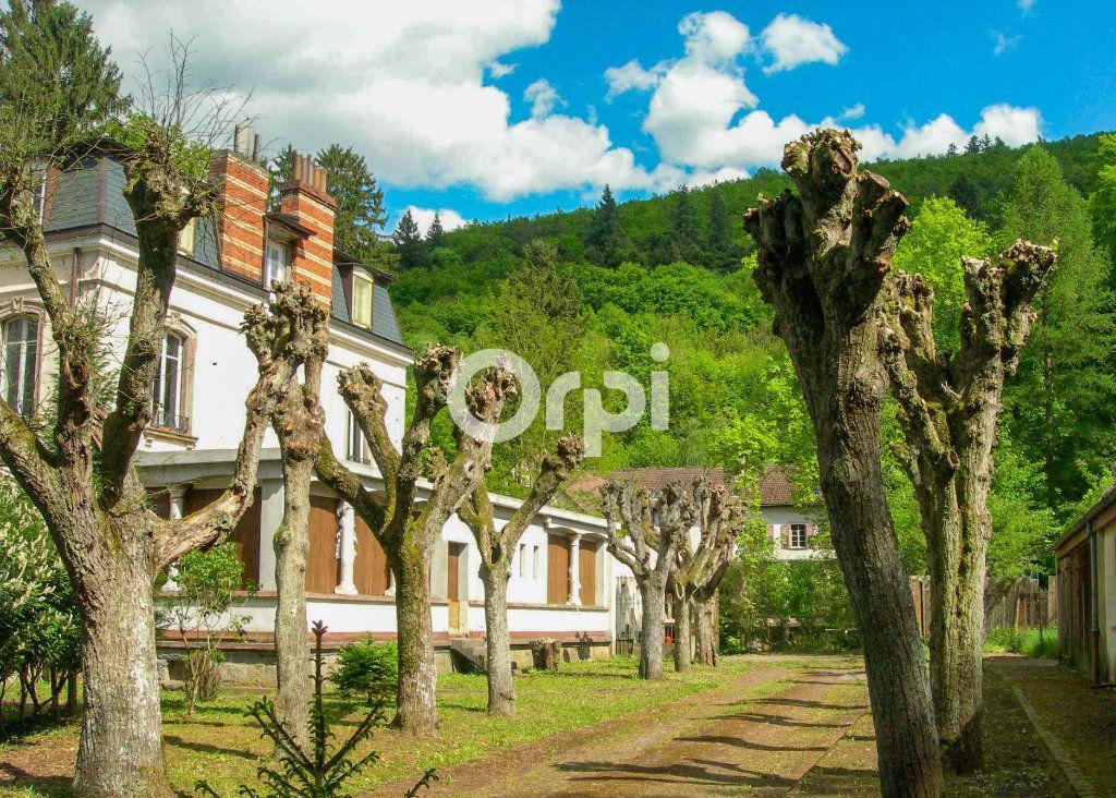 Immeuble à vendre 0 1755m2 à Soultzbach-les-Bains vignette-2