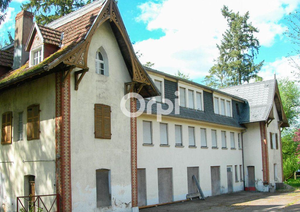 Immeuble à vendre 0 1755m2 à Soultzbach-les-Bains vignette-4