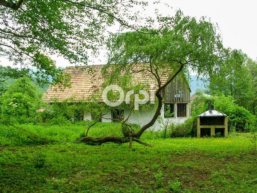 Immeuble à vendre 0 1755m2 à Soultzbach-les-Bains vignette-7