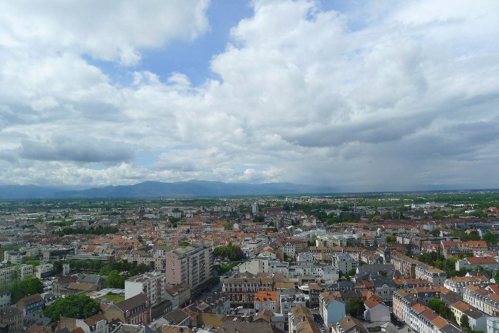 Appartement à louer 1 15.14m2 à Mulhouse vignette-4