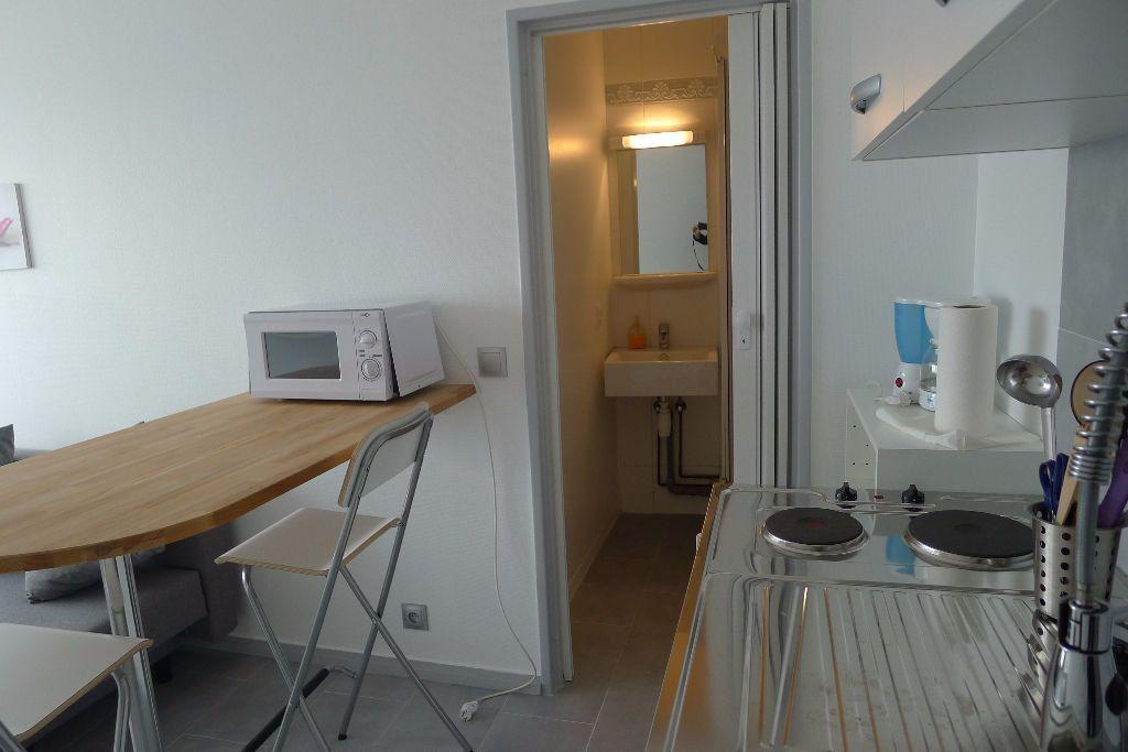 Appartement à louer 1 15.14m2 à Mulhouse vignette-7