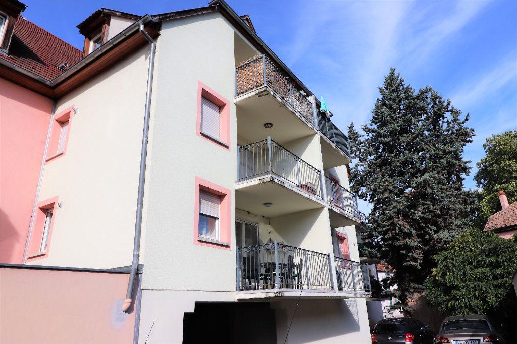 Appartement à louer 2 49.51m2 à Ensisheim vignette-1