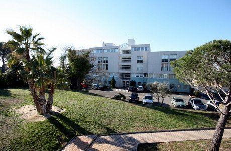 Appartement à louer 1 24m2 à Montpellier vignette-6