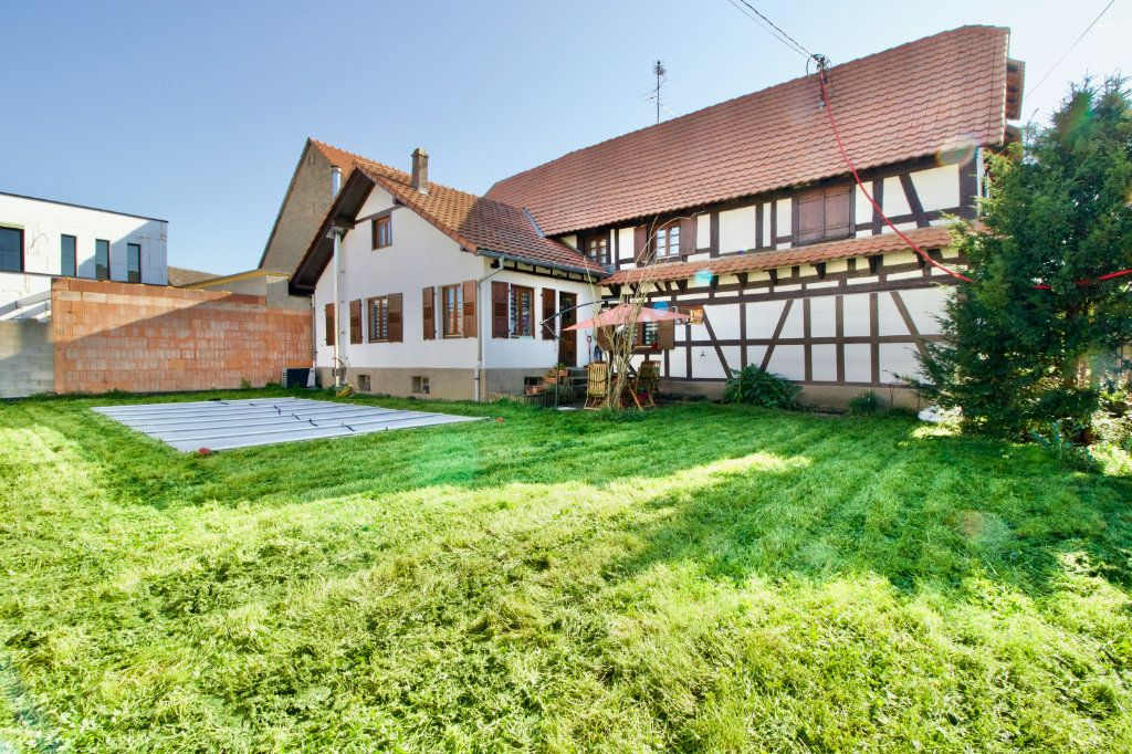 Maison à vendre 6 212.9m2 à Gambsheim vignette-1