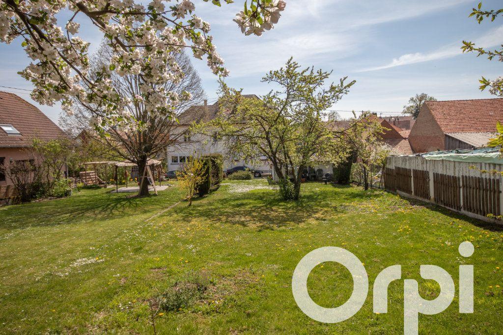 Appartement à vendre 6 152.67m2 à Hohatzenheim vignette-5