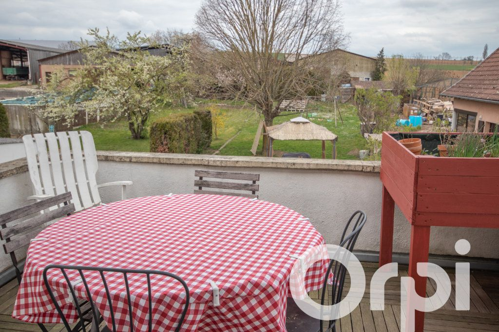 Appartement à vendre 6 152.67m2 à Hohatzenheim vignette-7