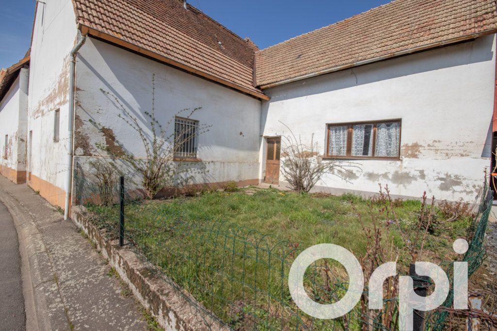 Maison à vendre 7 347m2 à Mittelhausen vignette-4