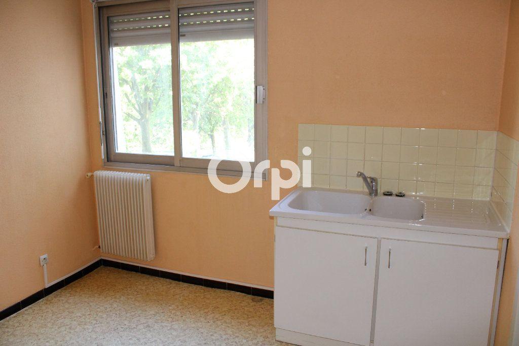Appartement à louer 2 55m2 à Montbéliard vignette-3