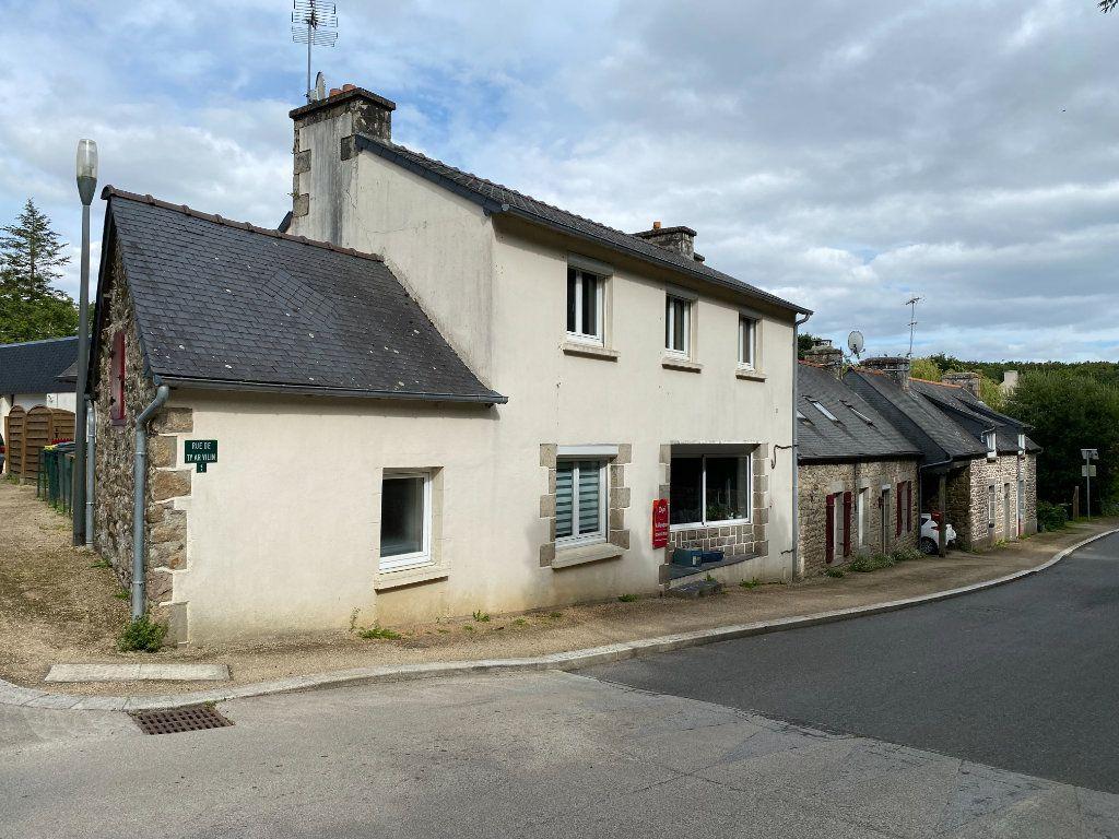 Maison à vendre 7 165m2 à Le Merzer vignette-5