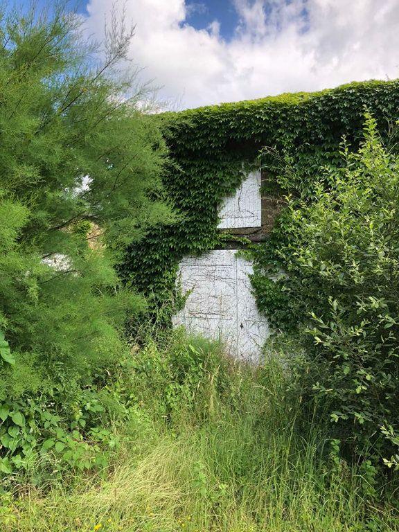 Maison à vendre 11 250m2 à Rochechouart vignette-4
