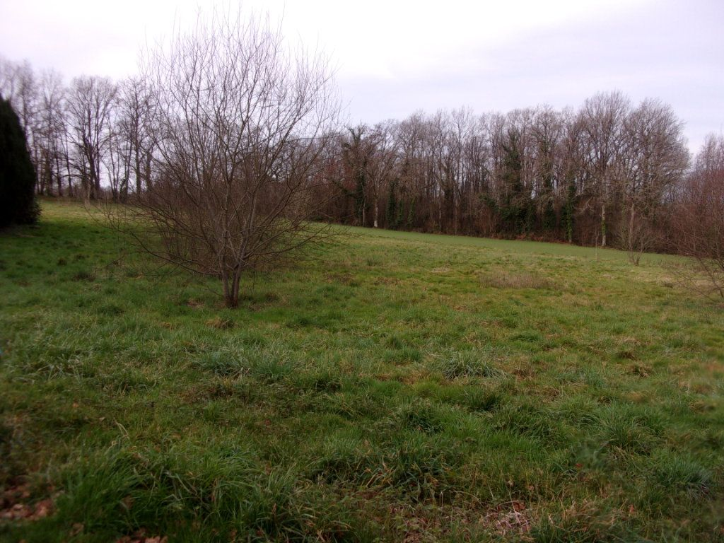 Terrain à vendre 0 3000m2 à Chaillac-sur-Vienne vignette-1