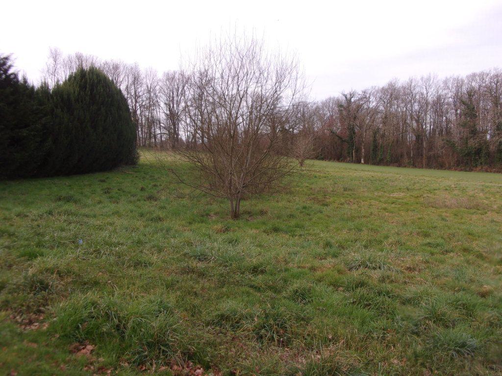 Terrain à vendre 0 3000m2 à Chaillac-sur-Vienne vignette-2