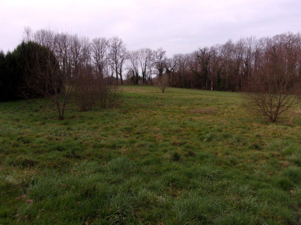 Terrain à vendre 0 3000m2 à Chaillac-sur-Vienne vignette-3