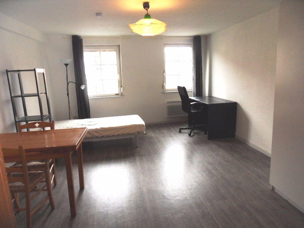 Appartement à louer 1 31.24m2 à Strasbourg vignette-1