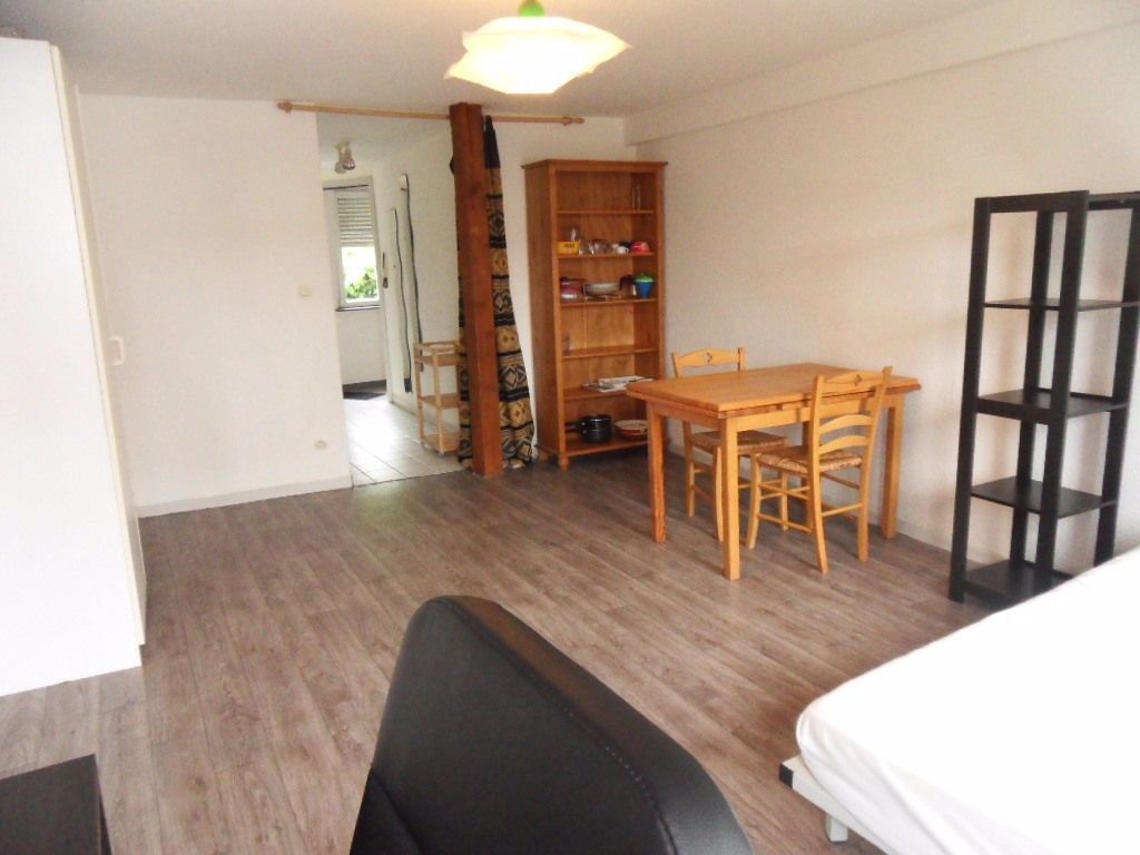 Appartement à louer 1 31.24m2 à Strasbourg vignette-2