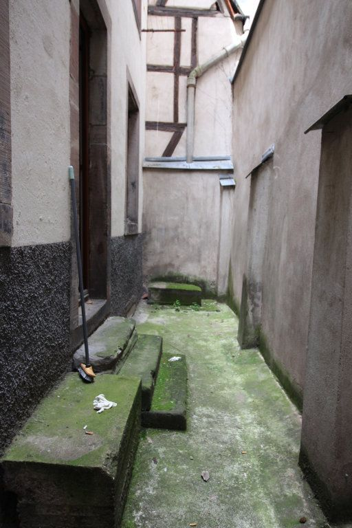 Appartement à louer 3 47.47m2 à Strasbourg vignette-5