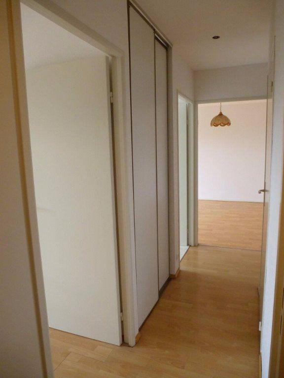Appartement à louer 2 46.14m2 à Souffelweyersheim vignette-4