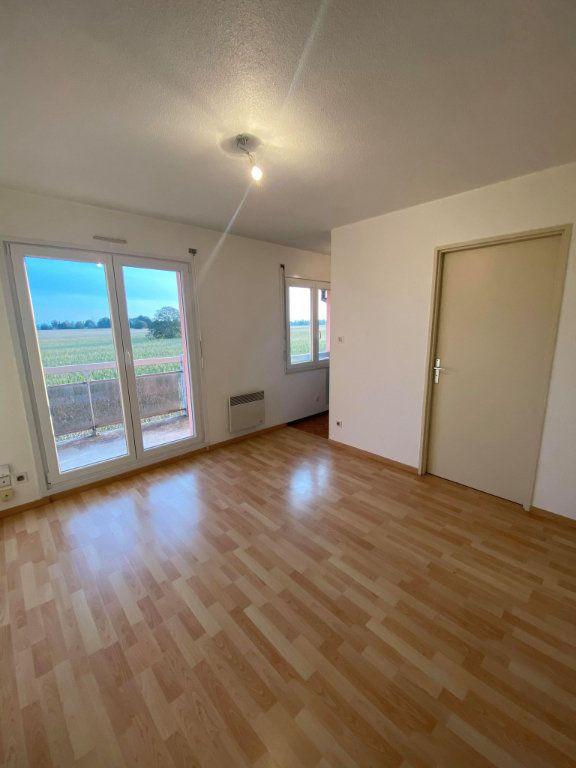 Appartement à louer 2 33.88m2 à Souffelweyersheim vignette-1