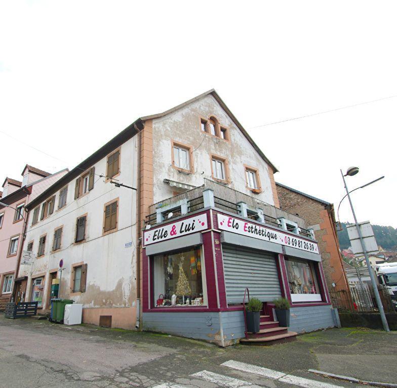 Immeuble à vendre 0 307m2 à Rothau vignette-7