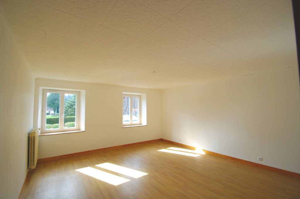Appartement à louer 4 110m2 à Plaine vignette-4