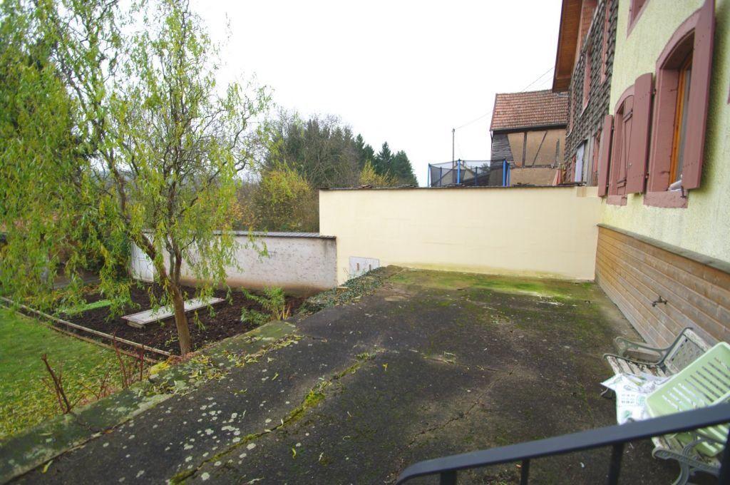 Appartement à louer 2 39m2 à Muhlbach-sur-Bruche vignette-6