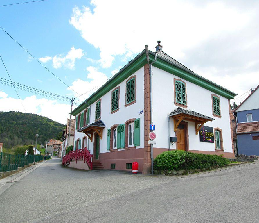 Immeuble à vendre 0 270m2 à Rothau vignette-1
