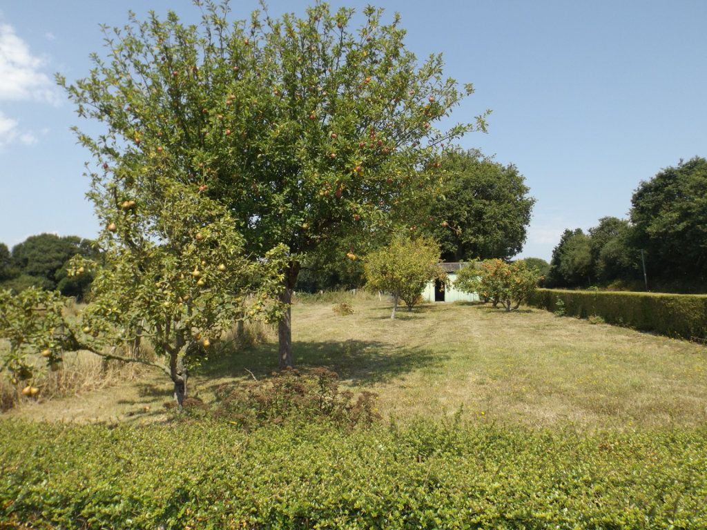 Maison à vendre 6 95m2 à Pommerit-le-Vicomte vignette-6