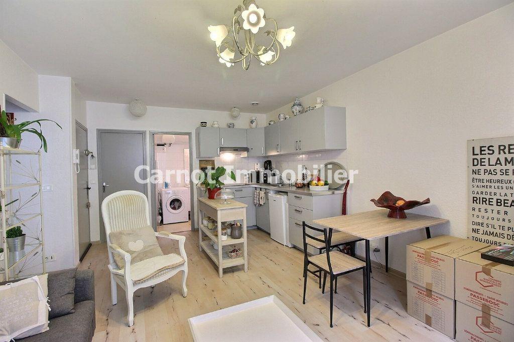 Appartement à louer 3 60m2 à Castres vignette-3