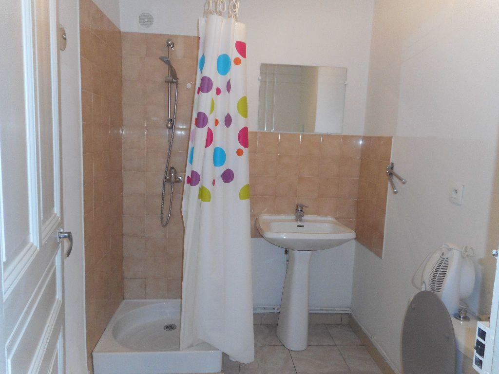 Appartement à louer 2 45m2 à Castres vignette-4