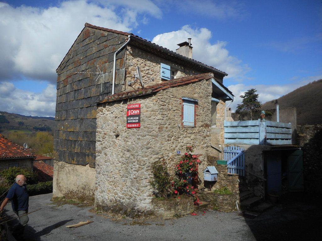 Maison à vendre 4 70m2 à Albine vignette-1