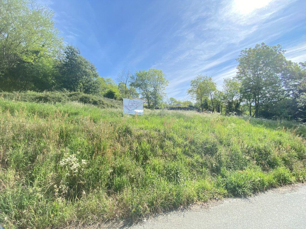Terrain à vendre 0 1019m2 à Pont-de-Larn vignette-6