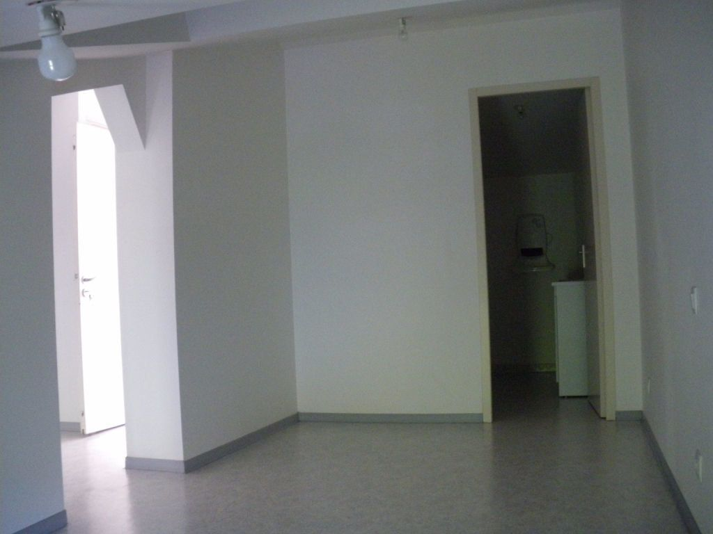 Appartement à louer 2 21m2 à Albi vignette-5