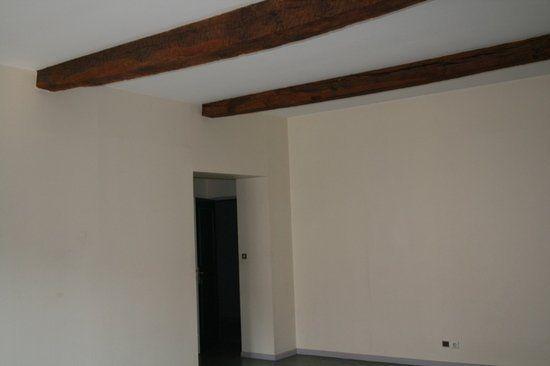 Appartement à louer 1 47.5m2 à Albi vignette-3