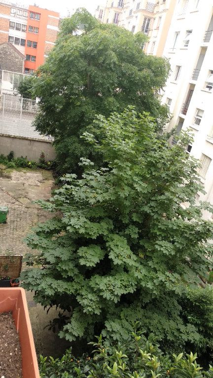Appartement à vendre 1 23.62m2 à Paris 11 vignette-6