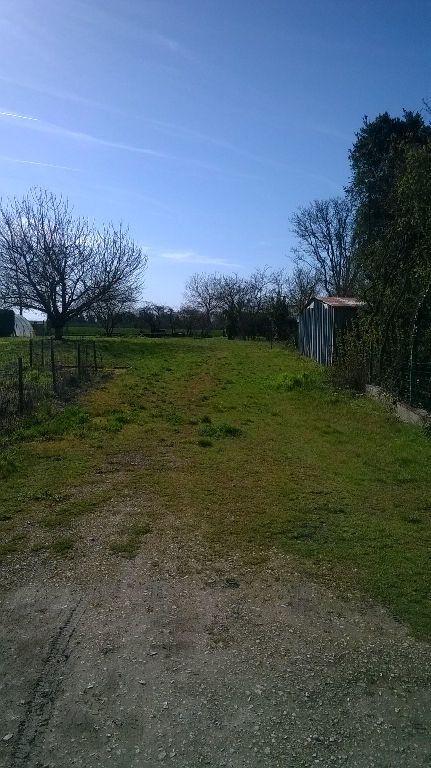 Terrain à vendre 0 515m2 à La Chapelle-Saint-Martin-en-Plaine vignette-2