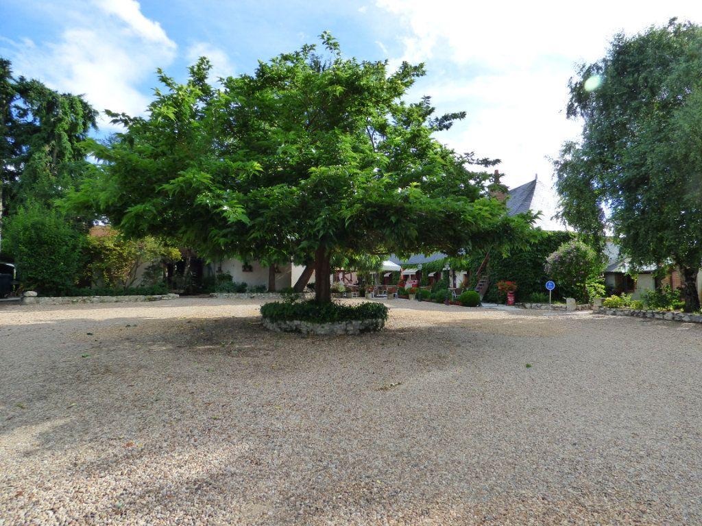 Maison à vendre 6 380m2 à Tour-en-Sologne vignette-4